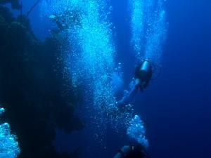 Diving Grand Cayman_Ian Austin_wall dive