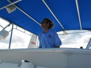 Sailing Falcon